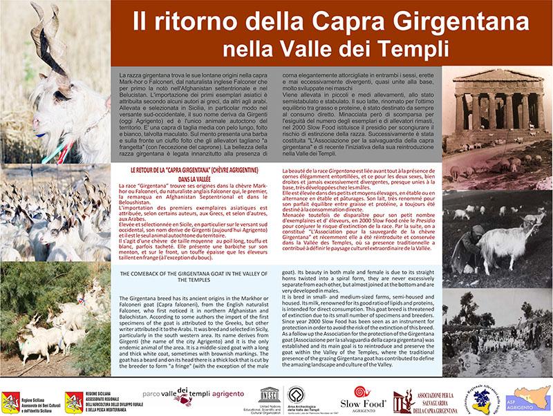 capra_girgentana_cartello_web